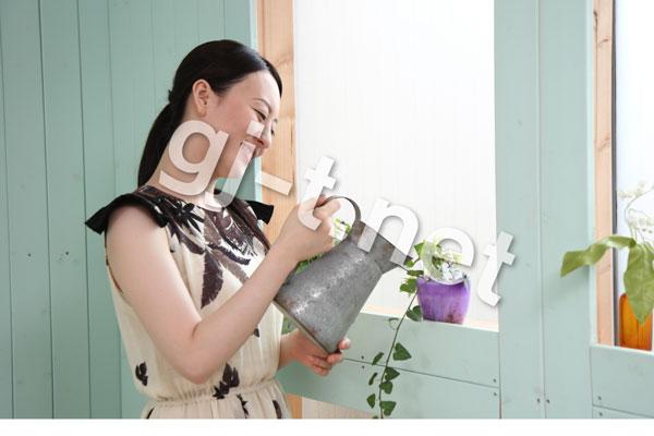 家で植物に水やり
